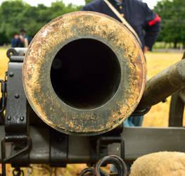 Cannon bore