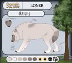 [DotW] Braigiel - Loner