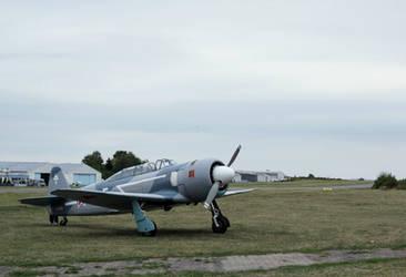 Jakowlew Jak-11 Moose