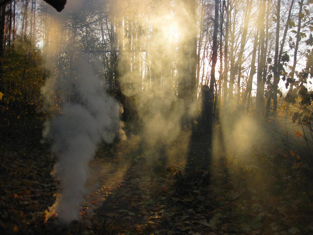 smoke 3 by severata
