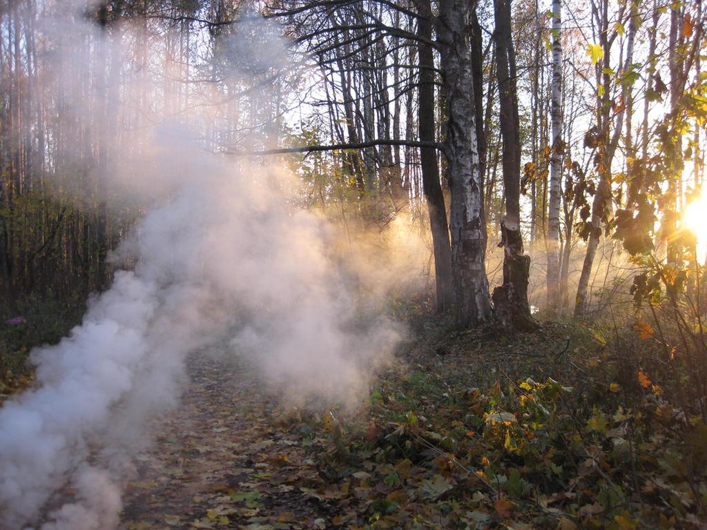 smoke 13 by severata