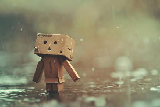 Danbo in the rain