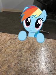 Dashie visiting me at School by UltimatePegasus-25