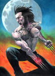 Wolverine 185 after Ribic