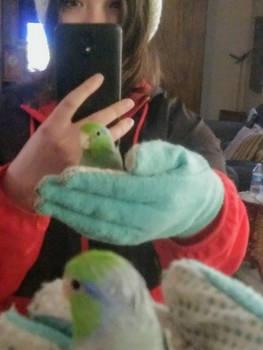 Birdy selfie?