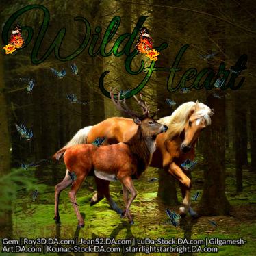 Wild Heart Avatar