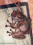 ceci n'est pas une grenouille