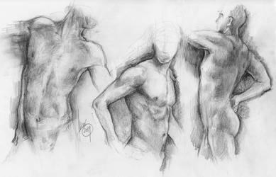 Male torso (livestream anatomy exercise)
