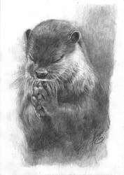 Otter (black and white)