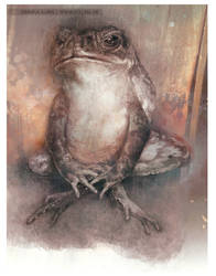 Toad (colour)