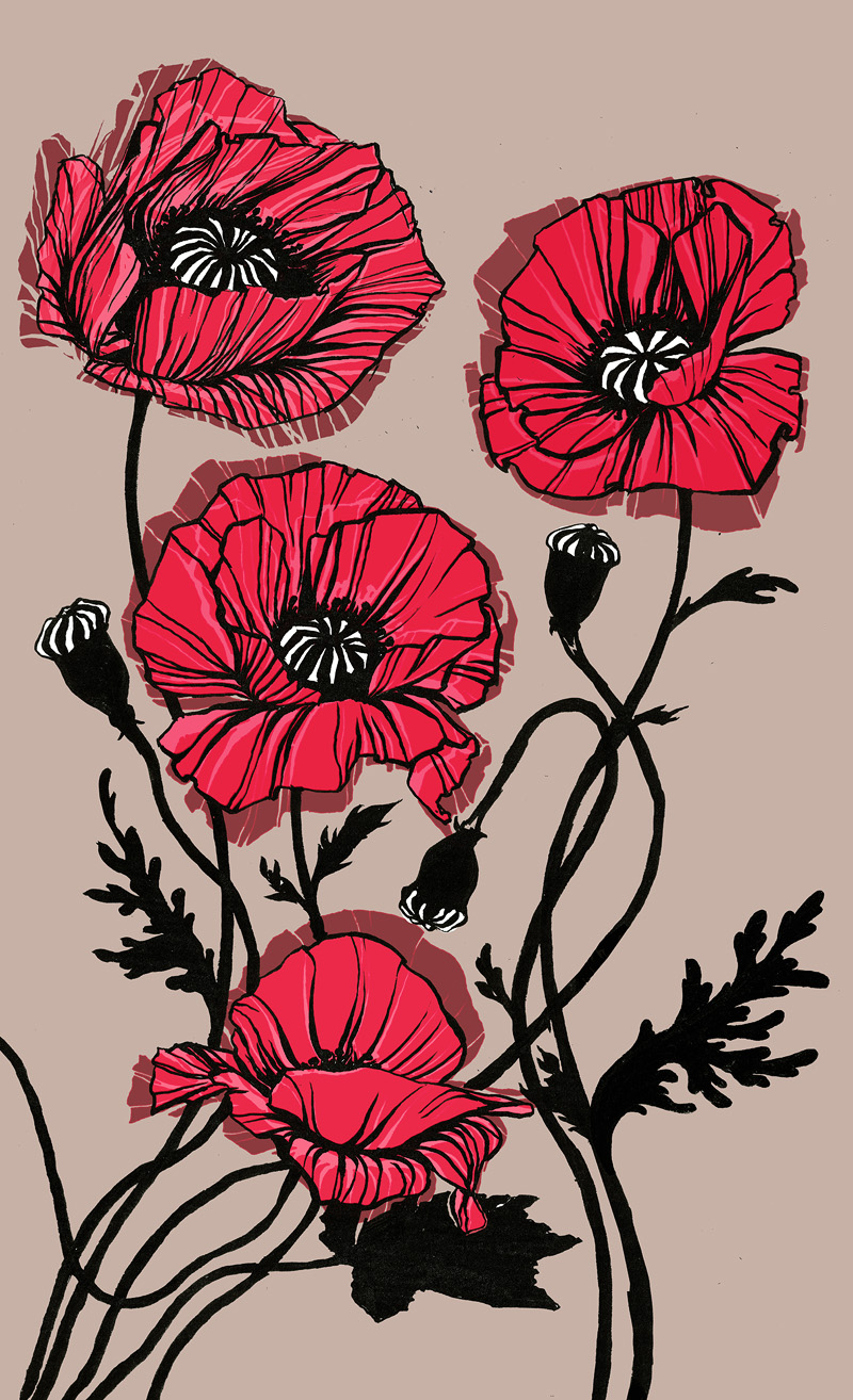 Three Poppies (natural colours)