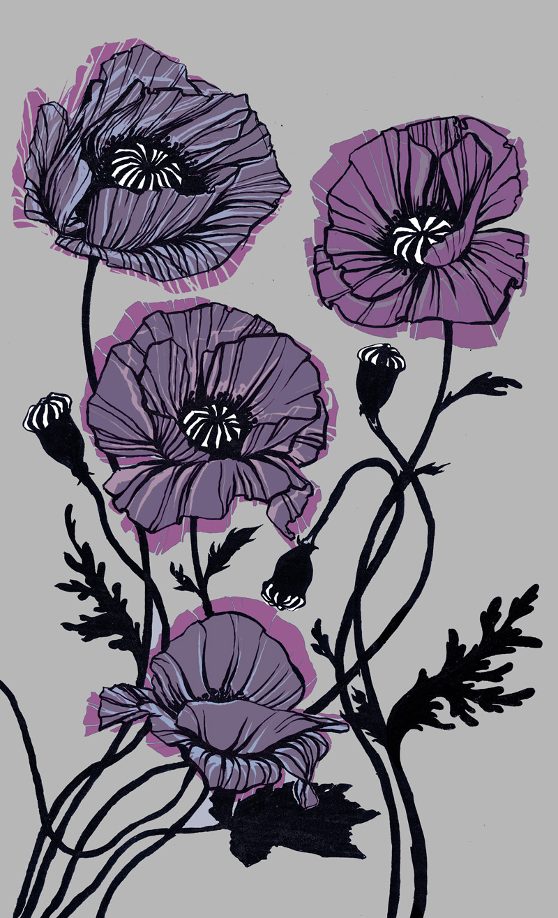 Three Poppies (ace colours)