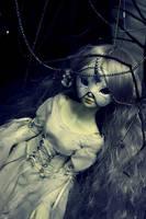 Dolliverse 2009 .4 by Y-n-Y