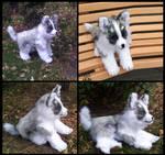 little Husky boy 100% handmade
