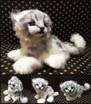 ETSY Commission snow leopard kitten