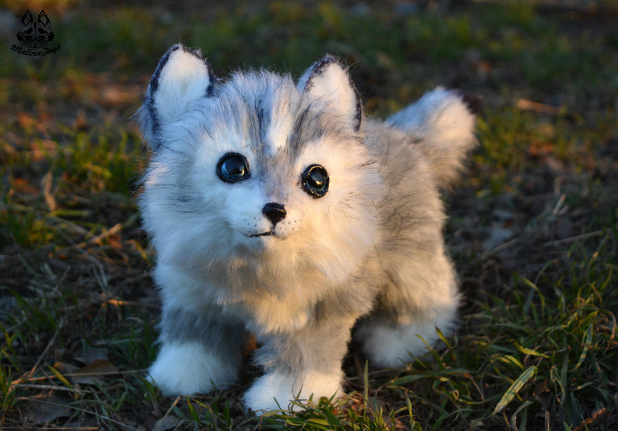 Poseable Toy Commission Oc Wolf Cub By Malinatoys On