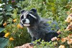 FOR SALE Handmade Poseable Raccoon