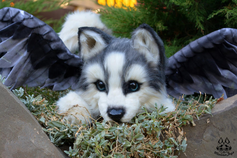 Poseable Toy Commission Husky Puppy With Wings By