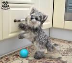 Handmade Poseable Wolf Cub commission