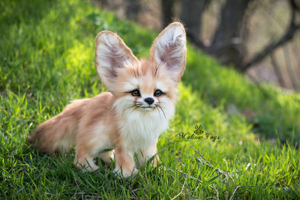 SOLD! Auction Handmade Poseable toy Fennec Fox