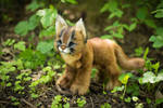 SOLD!  Handmade Poseable toy Caracal Kitten