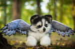 SOLD!100 % Handmade Poseable Husky with wings!