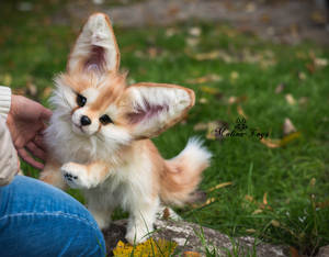 SOLD! Handmade Poseable toy Fennec Fox