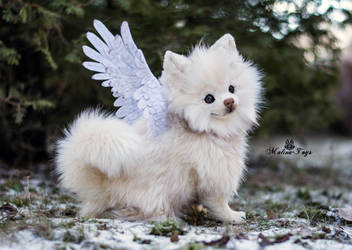 Poseable toy Commission white Pomeranian by MalinaToys