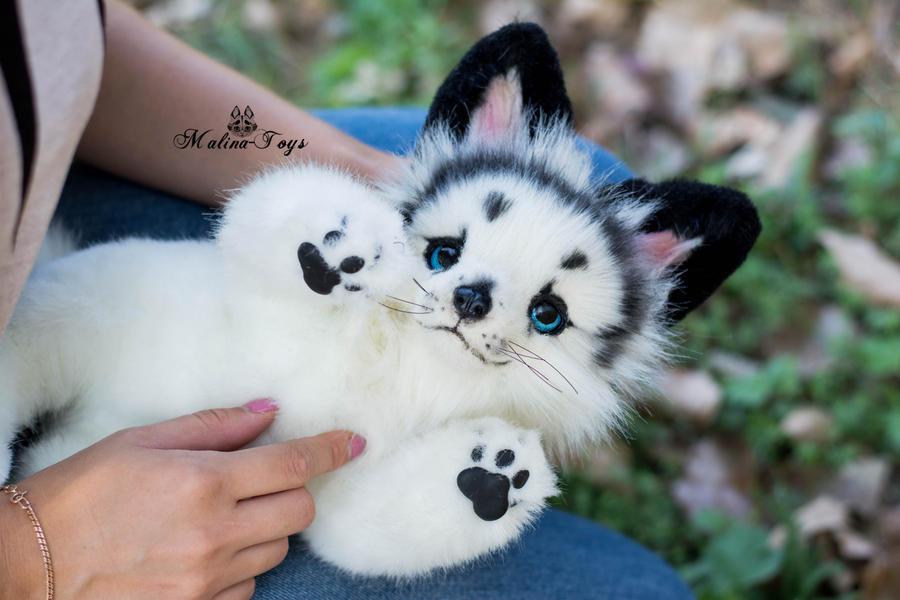 arctic marble fox pet 6485 movieweb