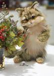 Handmade Poseable toy commission fluffy kitten