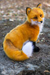 Poseable toy commission Red fox