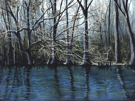 Lumbee River by ChevronLowery