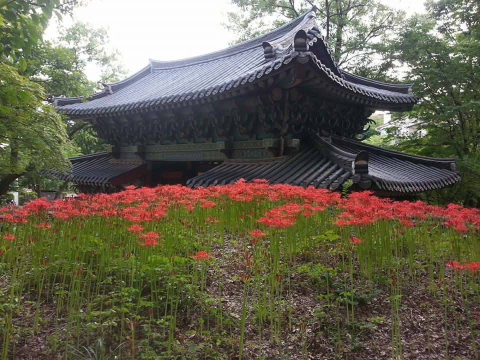 Temple of Flowers by EljotLJ