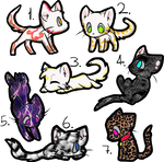 Cheap Kitty Adoptables {1/7 OPEN}