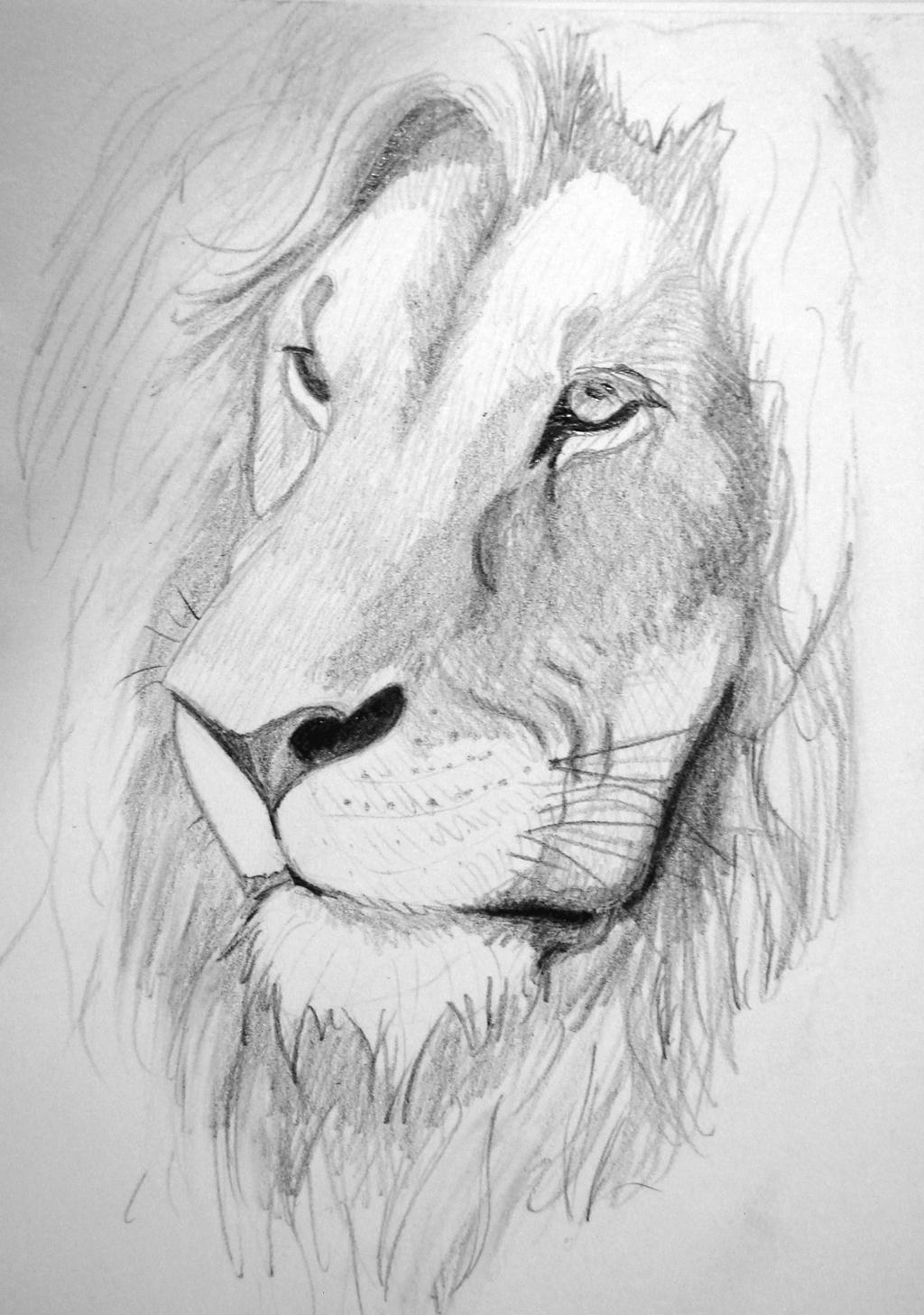 lion_11___closeup_by_kiaraslz_dcr7dww-fullview.jpg?token=eyJ0eXAiOiJKV1QiLCJhbGciOiJIUzI1NiJ9.eyJzdWIiOiJ1cm46YXBwOjdlMGQxODg5ODIyNjQzNzNhNWYwZDQxNWVhMGQyNmUwIiwiaXNzIjoidXJuOmFwcDo3ZTBkMTg4OTgyMjY0MzczYTVmMGQ0MTVlYTBkMjZlMCIsIm9iaiI6W1t7ImhlaWdodCI6Ijw9MTQ1NyIsInBhdGgiOiJcL2ZcL2U5ZDkzYWFmLTZkOGItNDdiZS04OTNkLWU5N2NiM2ViNDFiMFwvZGNyN2R3dy0zMzA1MzlhMy02MTRjLTRiM2ItODM0Ny05YmExNWE2ZjkxMzEuanBnIiwid2lkdGgiOiI8PTEwMjQifV1dLCJhdWQiOlsidXJuOnNlcnZpY2U6aW1hZ2Uub3BlcmF0aW9ucyJdfQ.CAQZsAyXNBLQLjpc7x_uKa4dKzOwy1reo8ImqIHx2rQ