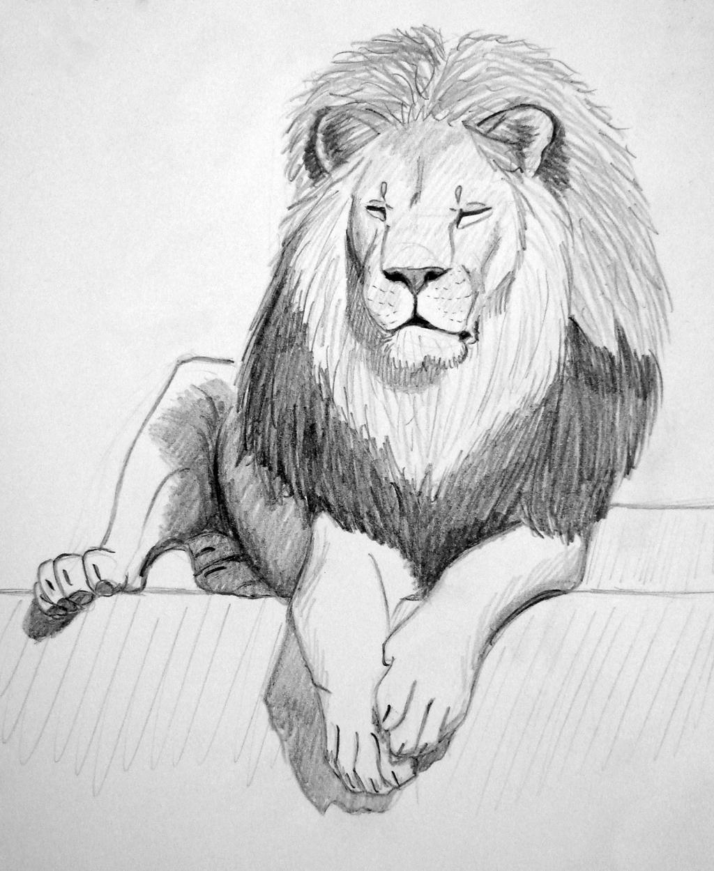lion_10___sleepy_one_by_kiaraslz_dcr7dxa-fullview.jpg?token=eyJ0eXAiOiJKV1QiLCJhbGciOiJIUzI1NiJ9.eyJzdWIiOiJ1cm46YXBwOjdlMGQxODg5ODIyNjQzNzNhNWYwZDQxNWVhMGQyNmUwIiwiaXNzIjoidXJuOmFwcDo3ZTBkMTg4OTgyMjY0MzczYTVmMGQ0MTVlYTBkMjZlMCIsIm9iaiI6W1t7ImhlaWdodCI6Ijw9MTI1MCIsInBhdGgiOiJcL2ZcL2U5ZDkzYWFmLTZkOGItNDdiZS04OTNkLWU5N2NiM2ViNDFiMFwvZGNyN2R4YS0wMjY1ZmZhMS01OGZiLTQ2ZGMtYWZjOS01ZjVlMzlkNWRjMTcuanBnIiwid2lkdGgiOiI8PTEwMjQifV1dLCJhdWQiOlsidXJuOnNlcnZpY2U6aW1hZ2Uub3BlcmF0aW9ucyJdfQ.O29zu3MPyZyobVZMTnV69mid156FJszmzZda9tFxNwk