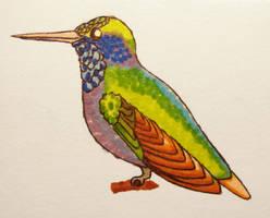 Colorfull hummingbird