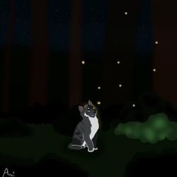 Fireflies~