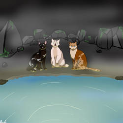 Moon meeting for the medicin cats