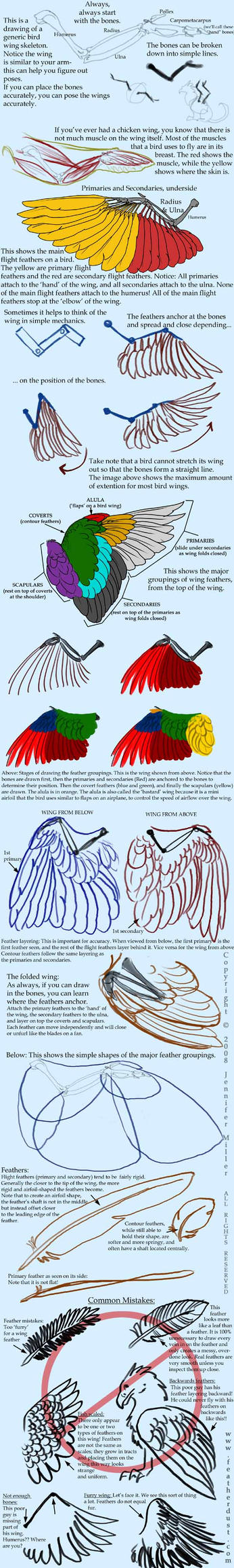 Realistic Bird Wings by Nambroth