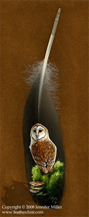 Painted Feather - Barn Owl II by Nambroth