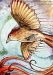 The Littlest Firebird by Nambroth