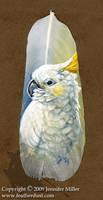 Tia Dalma the Cockatoo