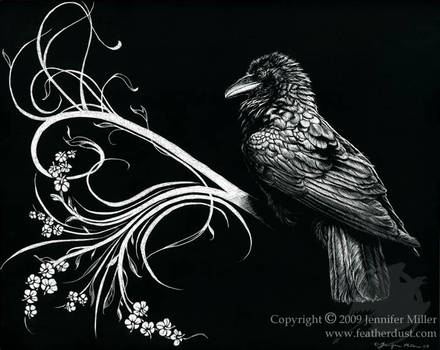 Raven Synthesis