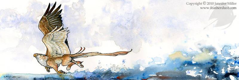 Skimming Gryphon