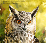 Happy Eagle Owl