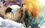 Red-Crowned Crane -- color --