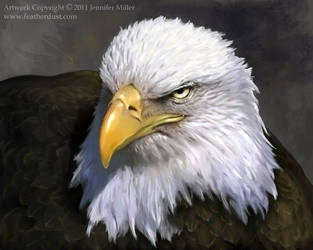 Decorah Eagle Mom by Nambroth