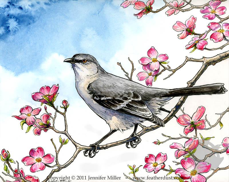 Mockingbird and Dogwood by Nambroth