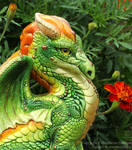 Flame-Crested Forest Dragon Windstone